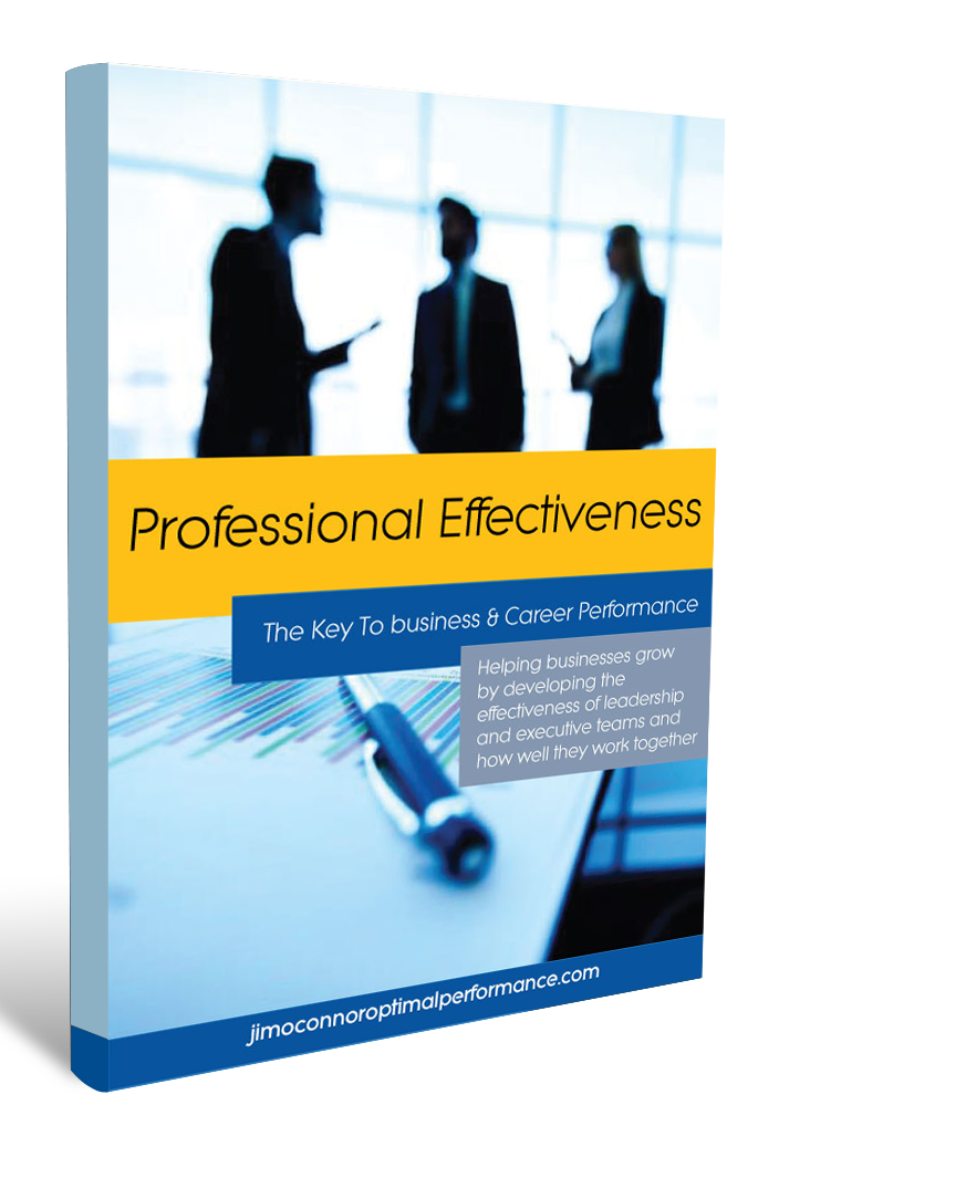 Professional-Effectiveness_3D-ebook-cover_portrait_updated